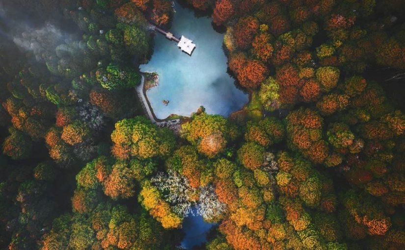 阿里山森林遊樂區景點推薦 | 你絕對不能錯過的網美必拍景點