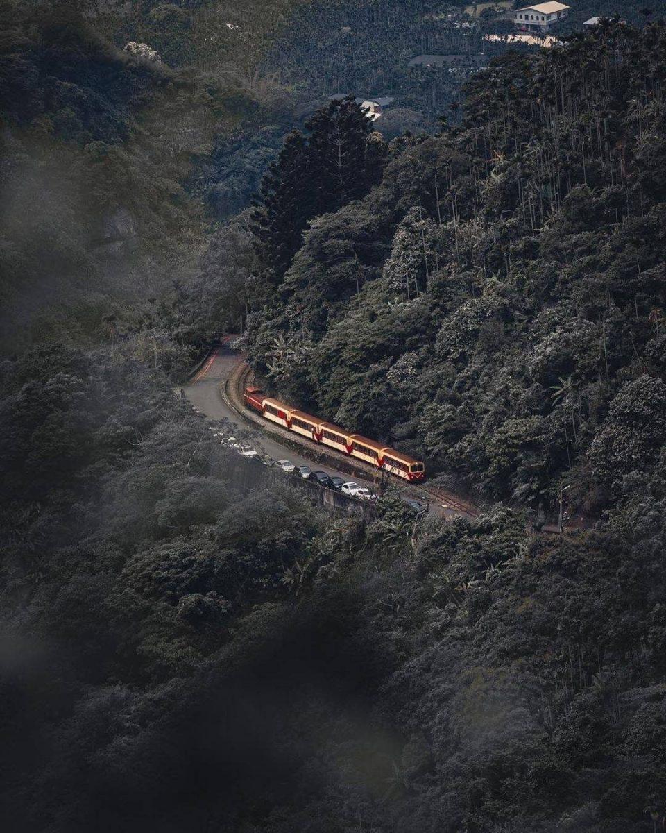 阿里山森林遊樂區交通攻略 | 自駕、台灣好行阿里山線、阿里山小火車、日月潭到阿里山通通沒問題