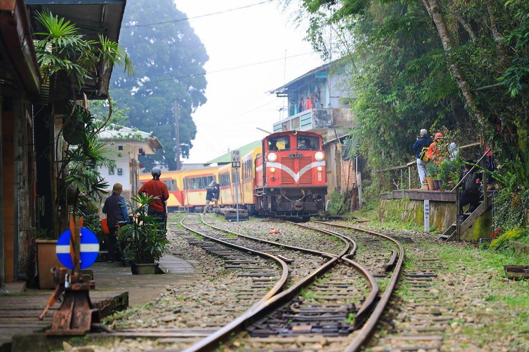 阿里山小火車訂票攻略 水社寮車站